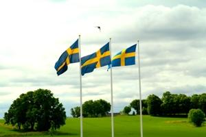 shvedskiy-flag-foto-1