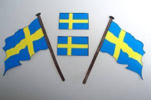 shvedskiy-flag-foto-2
